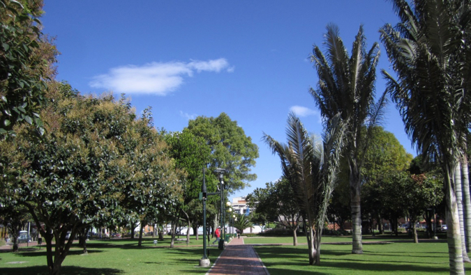 The grass and trees in Parque de la 93 in Bogota, Colombia
