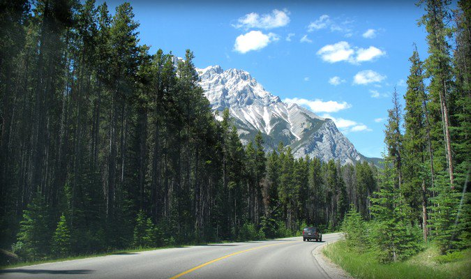 Open road, free forest and beautiful mountain range
