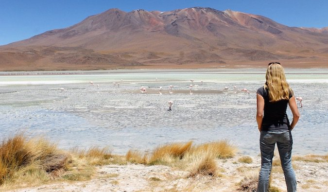 woman gazing into distance in desert with flamingos