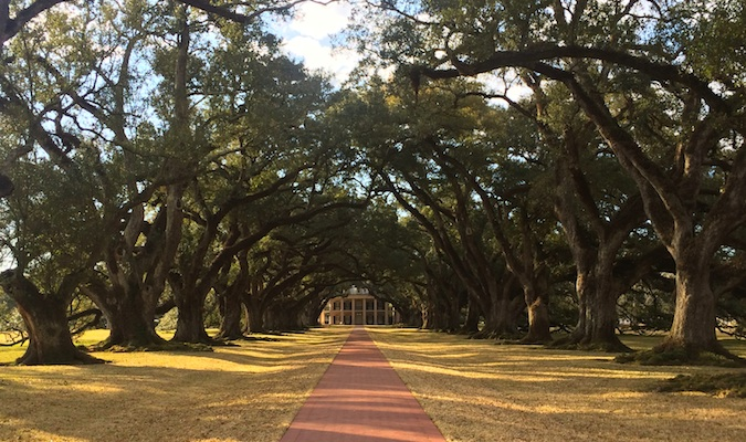 Walkway to the famous Oak Alley plantation home